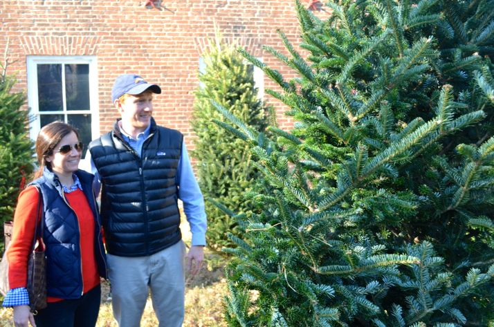Wes and Emily Fehsenfeld of Fairway select the perfect tree Sunday at the Shawnee Indian Mission.