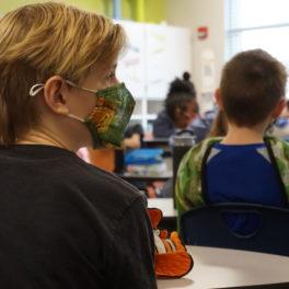 Shawnee Mission masks