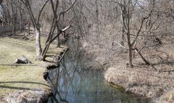 Negro Creek