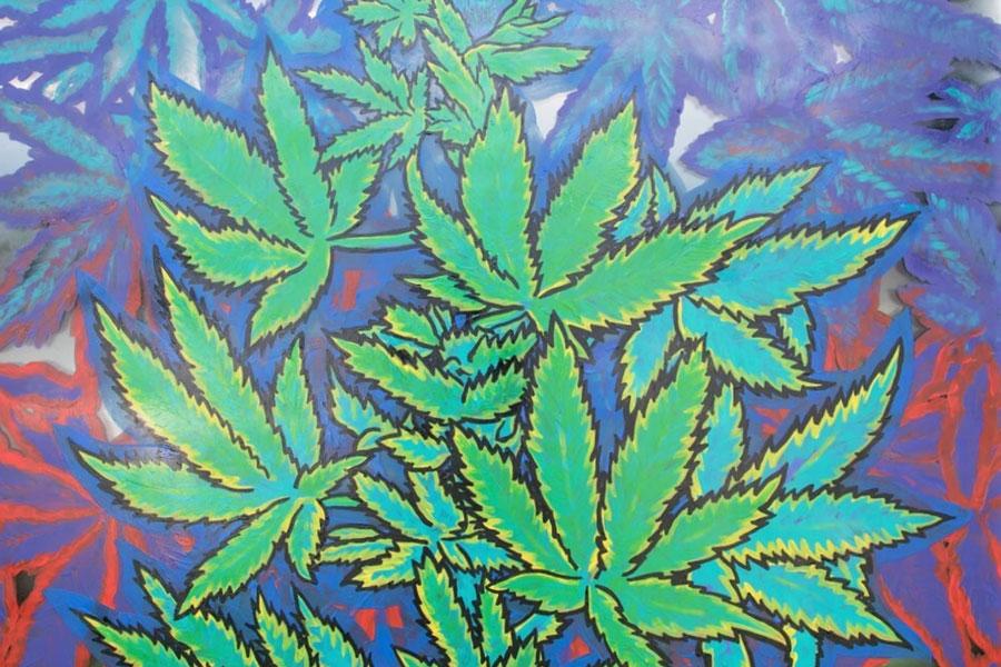 medical marijuana Kansas