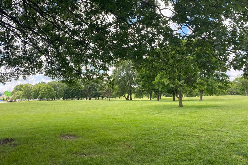 Meadowbrook Park near Roe Avenue
