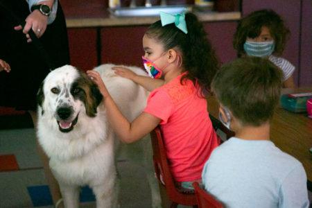Daisy Mae meets a kindergarten student
